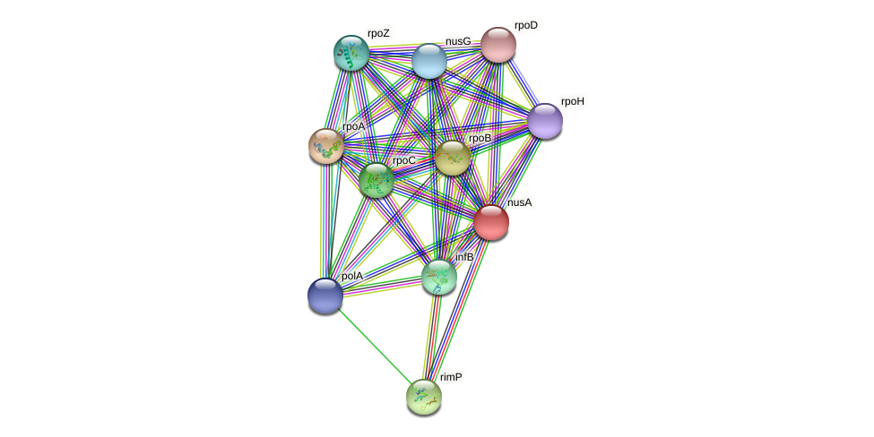 nusA protein (Nitrosomonas eutropha) - STRING interaction network
