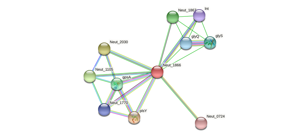 Neut_1866 protein (Nitrosomonas eutropha) - STRING interaction network