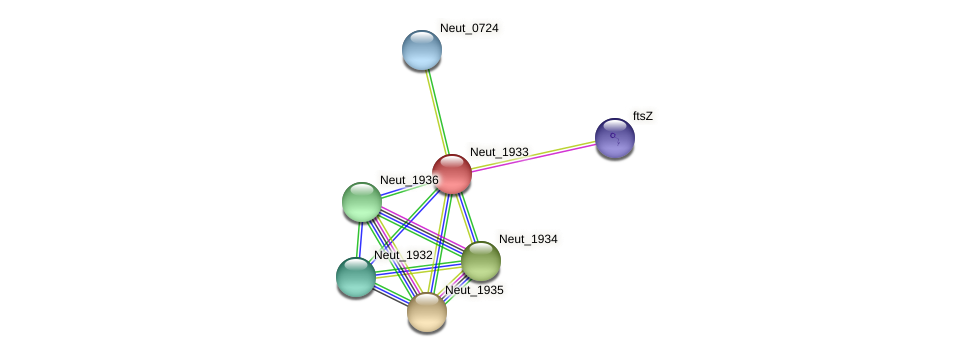 Neut_1933 protein (Nitrosomonas eutropha) - STRING interaction network