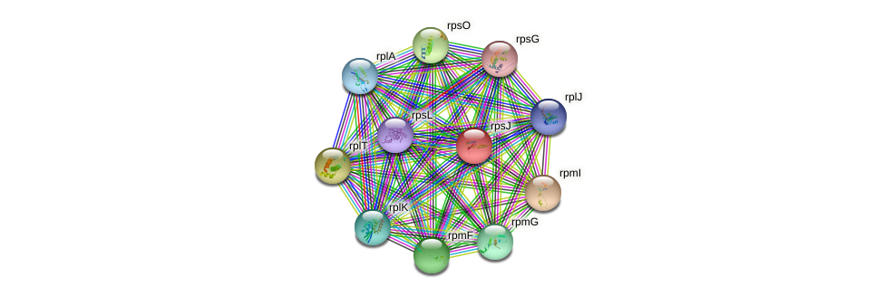 rpsJ protein (Syntrophobacter fumaroxidans) - STRING interaction network