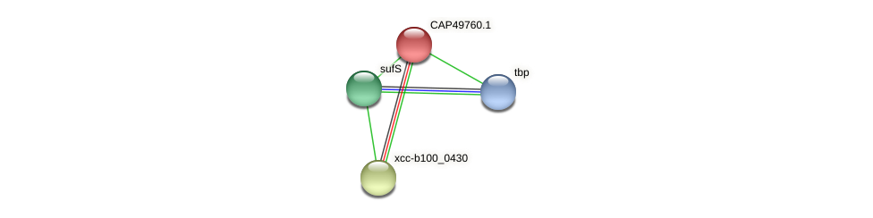 CAP49760.1 protein (Xanthomonas campestris campestris) - STRING interaction network