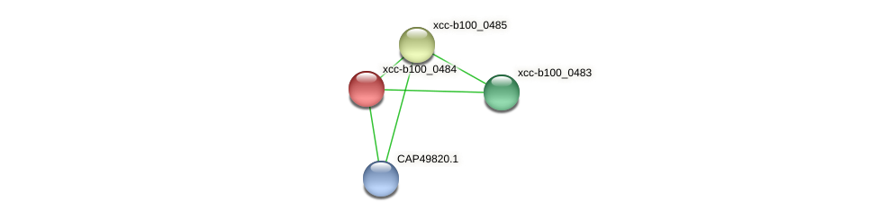 XCC0450 protein (Xanthomonas campestris campestris) - STRING interaction network