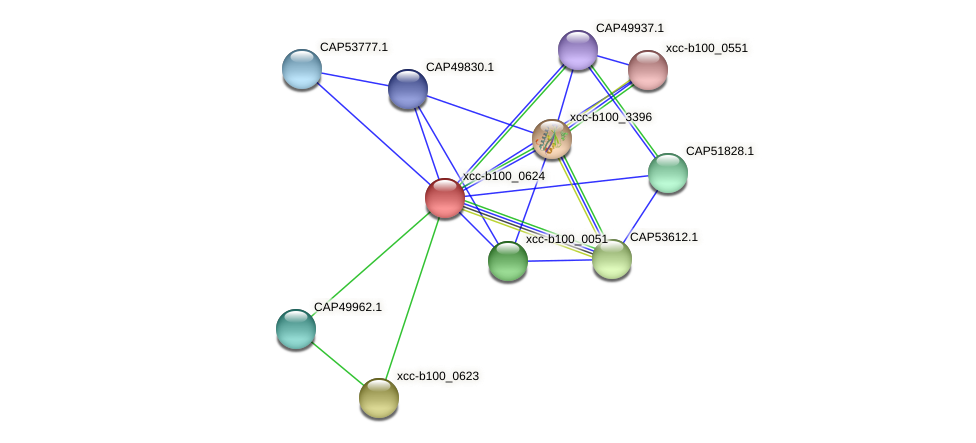 XCC3567 protein (Xanthomonas campestris campestris) - STRING interaction network