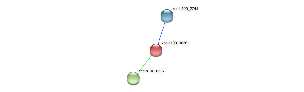 XCC3566 protein (Xanthomonas campestris campestris) - STRING interaction network