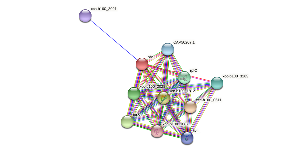 phS protein (Xanthomonas campestris campestris) - STRING interaction network