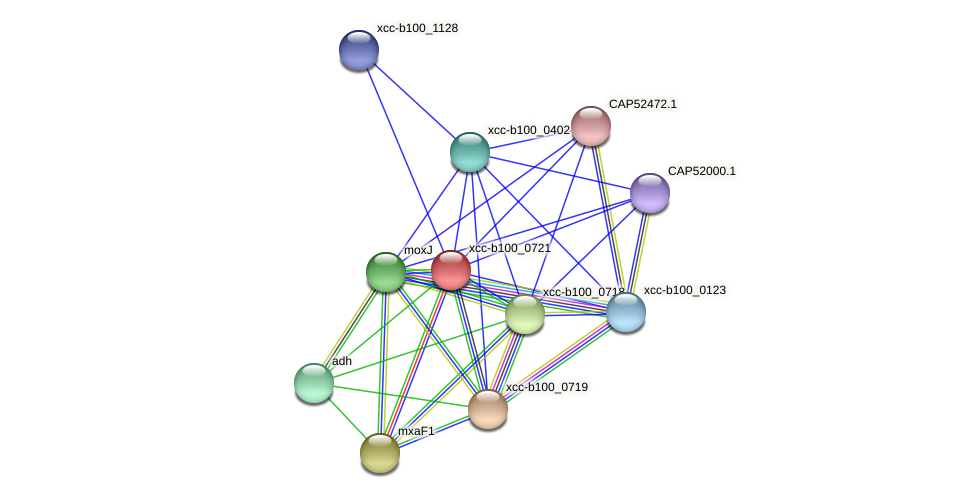 XCC3474 protein (Xanthomonas campestris campestris) - STRING interaction network