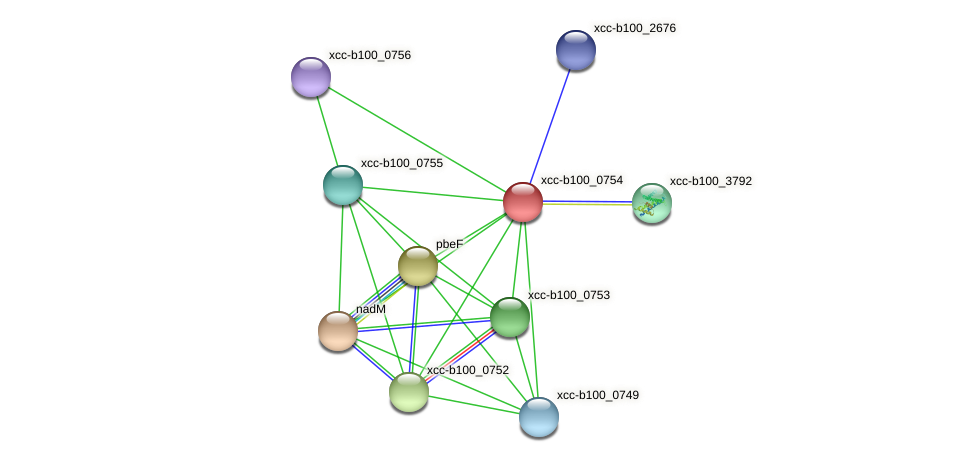 XCC3442 protein (Xanthomonas campestris campestris) - STRING interaction network