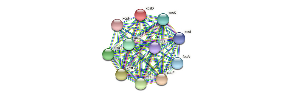 xcsD protein (Xanthomonas campestris campestris) - STRING interaction network