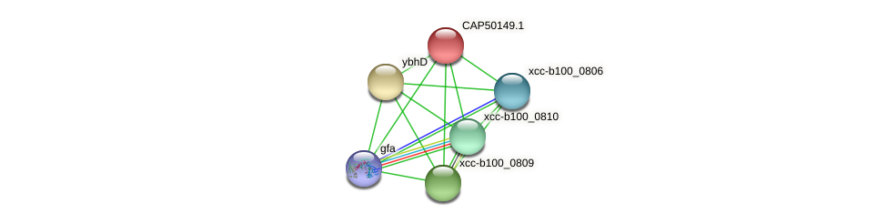 CAP50149.1 protein (Xanthomonas campestris campestris) - STRING interaction network