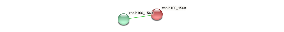 XCC2594 protein (Xanthomonas campestris campestris) - STRING interaction network