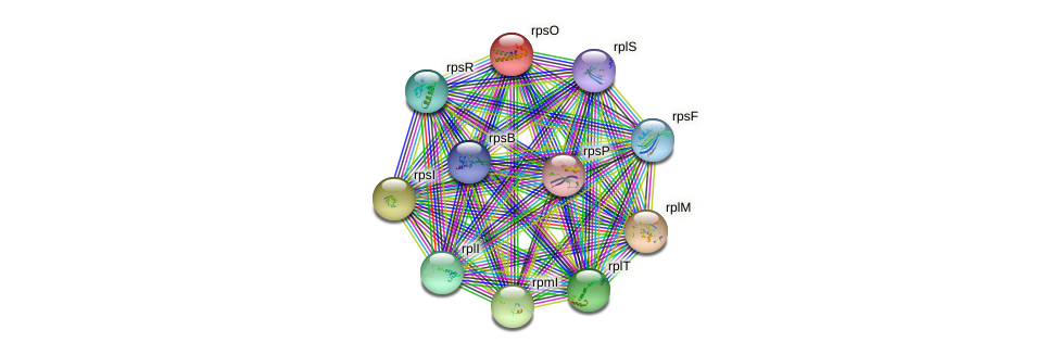 rpsO protein (Xanthomonas campestris campestris) - STRING interaction network