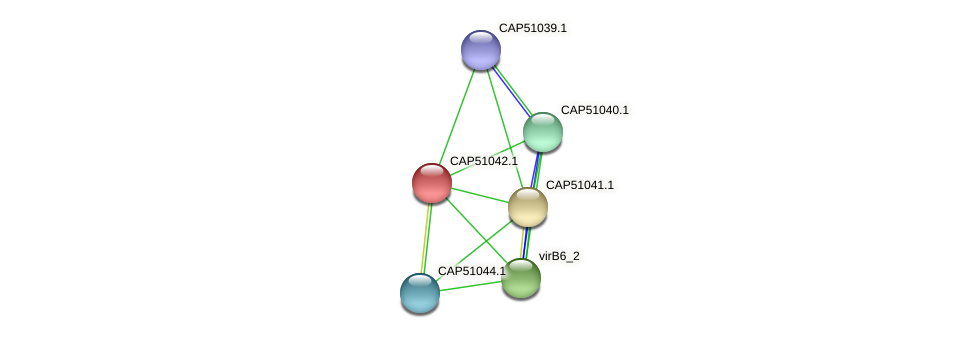 CAP51042.1 protein (Xanthomonas campestris campestris) - STRING interaction network