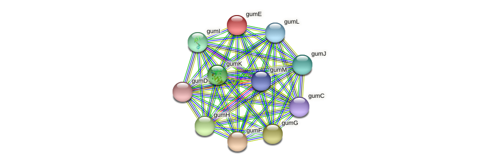 gumE protein (Xanthomonas campestris campestris) - STRING interaction network