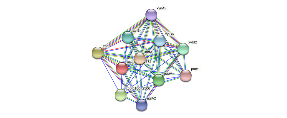 XCC2394 protein (Xanthomonas campestris campestris) - STRING interaction network