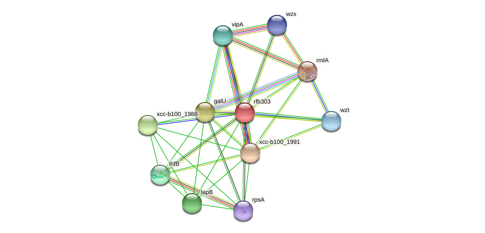 rfb303 protein (Xanthomonas campestris campestris) - STRING interaction network
