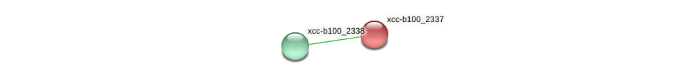 XCC2035 protein (Xanthomonas campestris campestris) - STRING interaction network