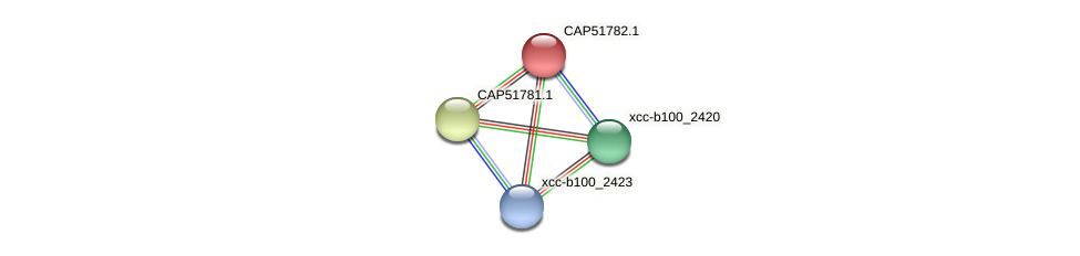 CAP51782.1 protein (Xanthomonas campestris campestris) - STRING interaction network