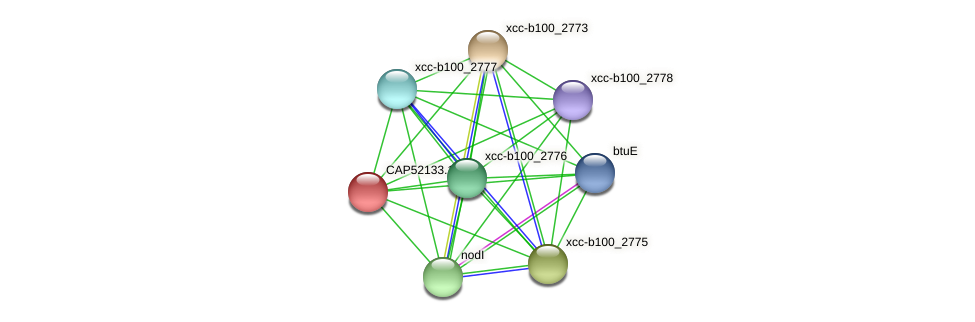 CAP52133.1 protein (Xanthomonas campestris campestris) - STRING interaction network