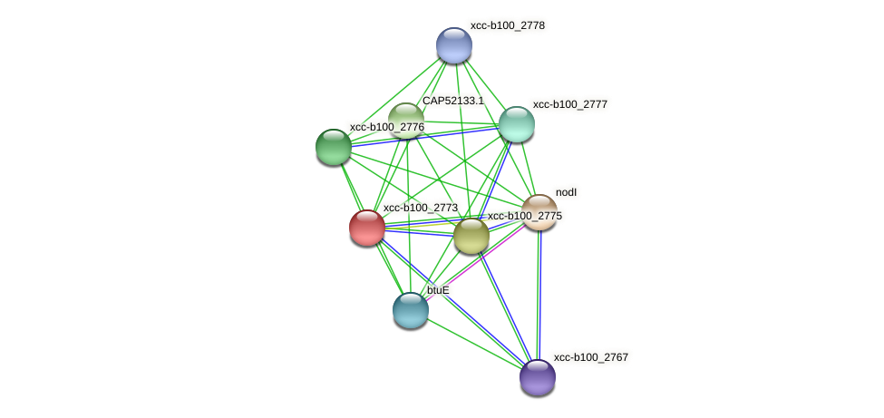 XCC1500 protein (Xanthomonas campestris campestris) - STRING interaction network
