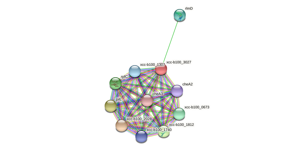 XCC1276 protein (Xanthomonas campestris campestris) - STRING interaction network