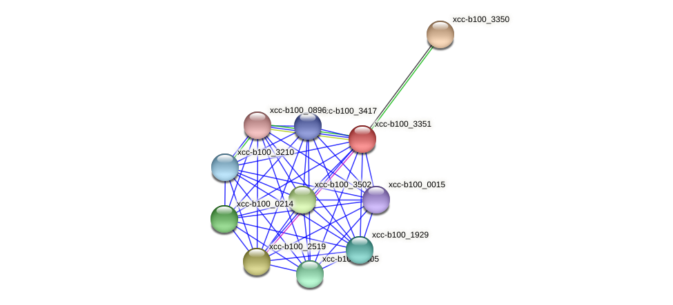 XCC1009 protein (Xanthomonas campestris campestris) - STRING interaction network