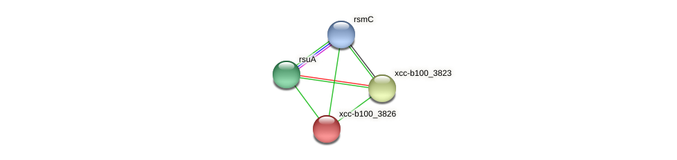 XCC3640 protein (Xanthomonas campestris campestris) - STRING interaction network