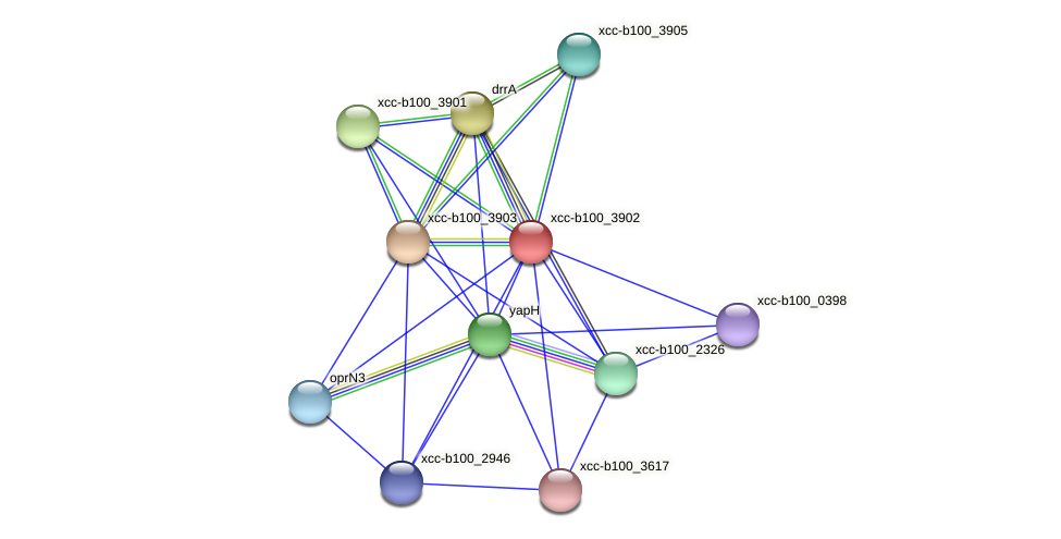 XCC3715 protein (Xanthomonas campestris campestris) - STRING interaction network