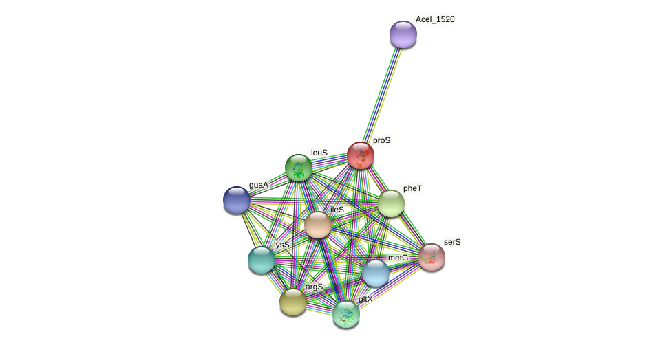 proS protein (Acidothermus cellulolyticus) - STRING interaction network