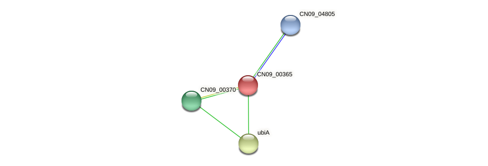 CN09_00365 protein (Agrobacterium rhizogenes) - STRING interaction network