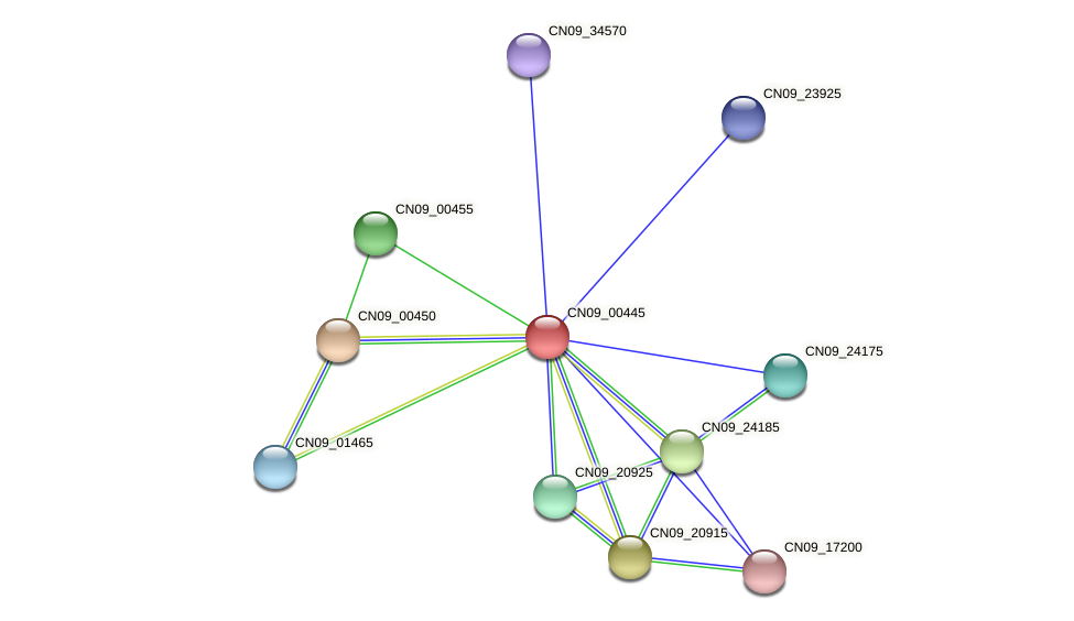 CN09_00445 protein (Agrobacterium rhizogenes) - STRING interaction network