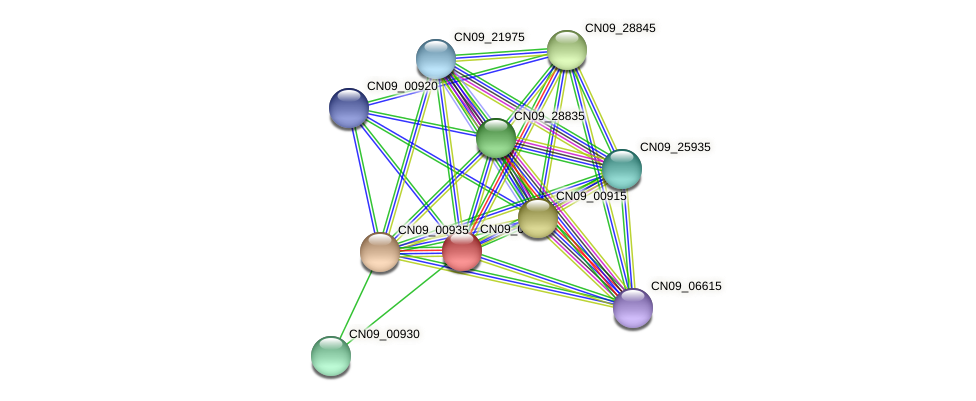 CN09_00940 protein (Agrobacterium rhizogenes) - STRING interaction network