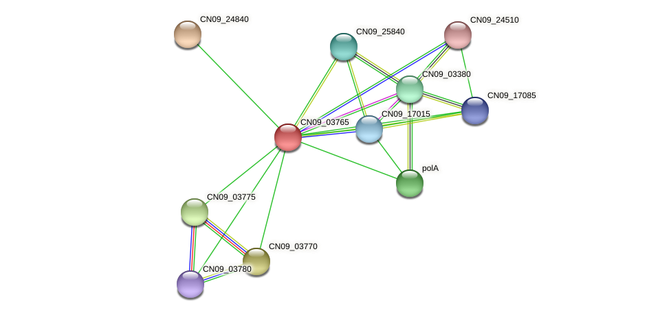 CN09_03765 protein (Agrobacterium rhizogenes) - STRING interaction network
