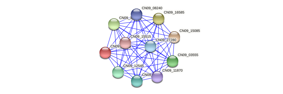 CN09_04595 protein (Agrobacterium rhizogenes) - STRING interaction network