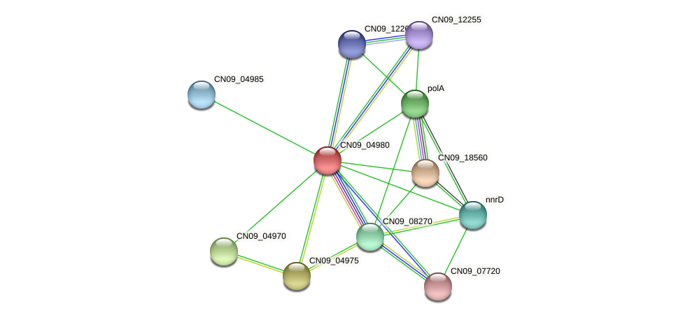 CN09_04980 protein (Agrobacterium rhizogenes) - STRING interaction network