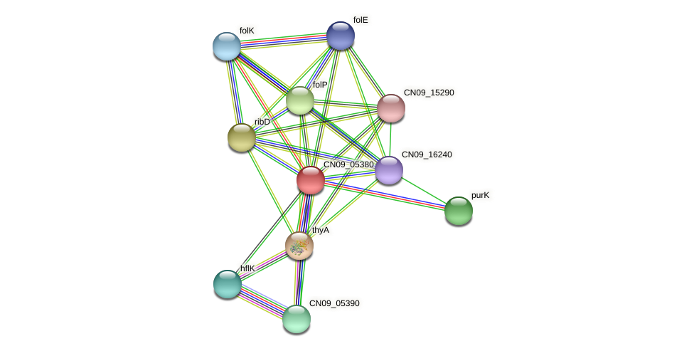 CN09_05380 protein (Agrobacterium rhizogenes) - STRING interaction network