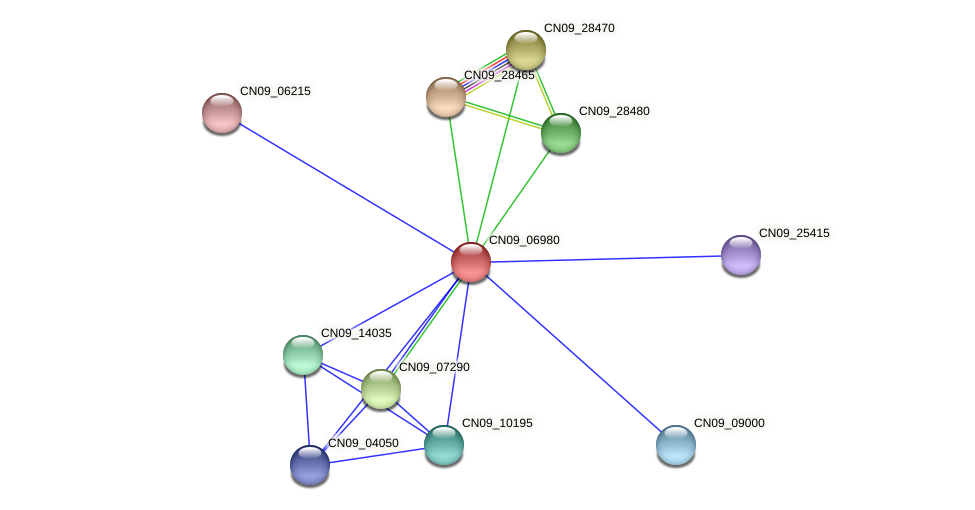 CN09_06980 protein (Agrobacterium rhizogenes) - STRING interaction network
