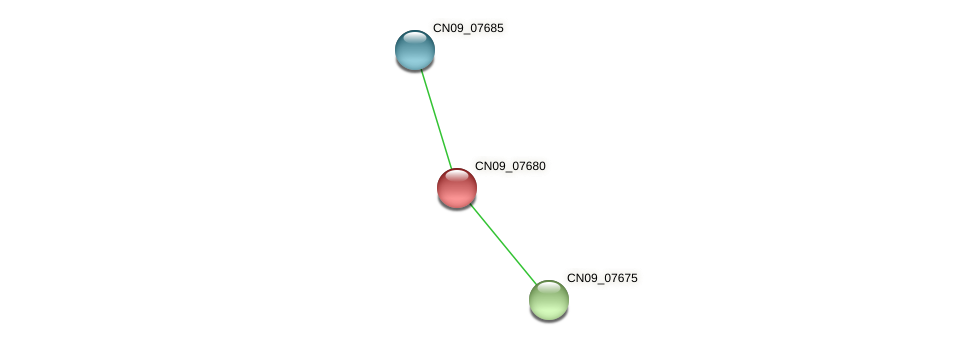 CN09_07680 protein (Agrobacterium rhizogenes) - STRING interaction network