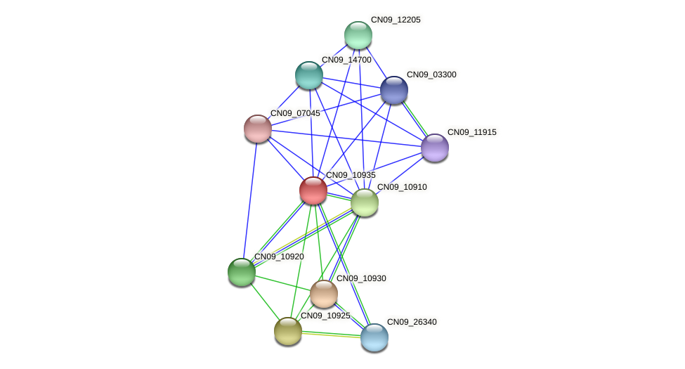 CN09_10935 protein (Agrobacterium rhizogenes) - STRING interaction network