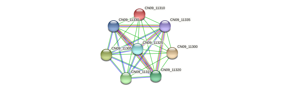 CN09_11310 protein (Agrobacterium rhizogenes) - STRING interaction network