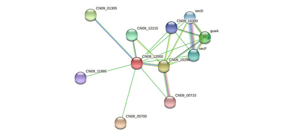 CN09_12000 protein (Agrobacterium rhizogenes) - STRING interaction network