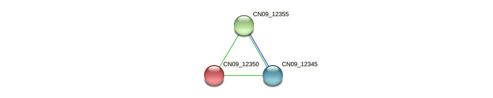 CN09_12350 protein (Agrobacterium rhizogenes) - STRING interaction network