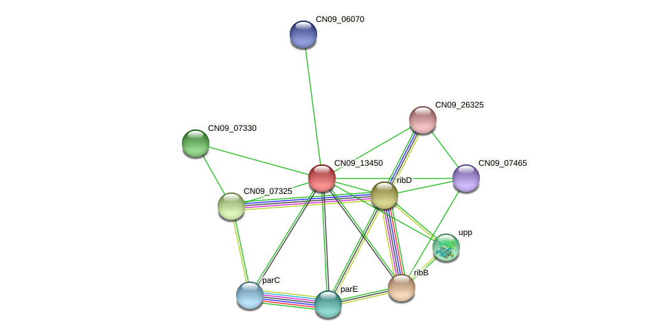 CN09_13450 protein (Agrobacterium rhizogenes) - STRING interaction network
