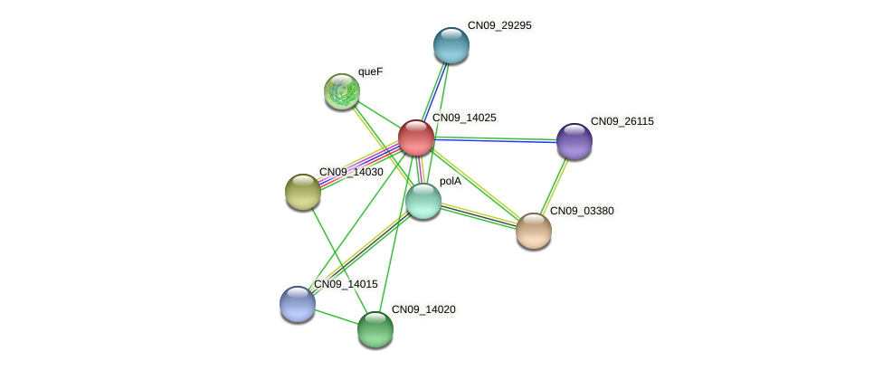 CN09_14025 protein (Agrobacterium rhizogenes) - STRING interaction network