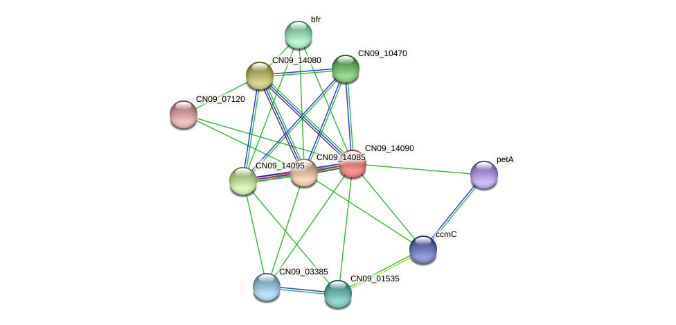 CN09_14090 protein (Agrobacterium rhizogenes) - STRING interaction network