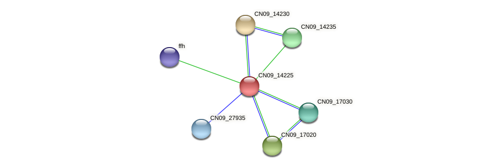 CN09_14225 protein (Agrobacterium rhizogenes) - STRING interaction network
