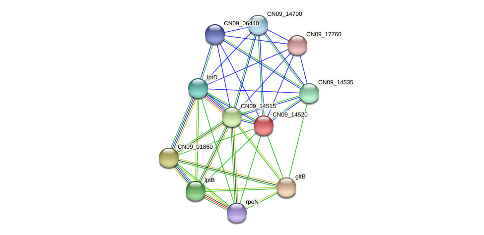CN09_14520 protein (Agrobacterium rhizogenes) - STRING interaction network