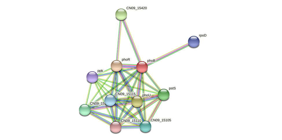 CN09_15125 protein (Agrobacterium rhizogenes) - STRING interaction network