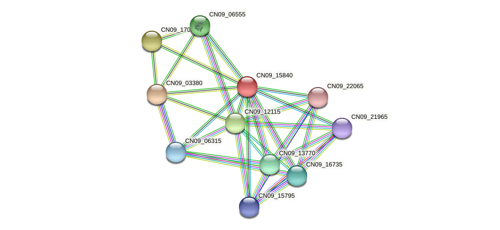 CN09_15840 protein (Agrobacterium rhizogenes) - STRING interaction network