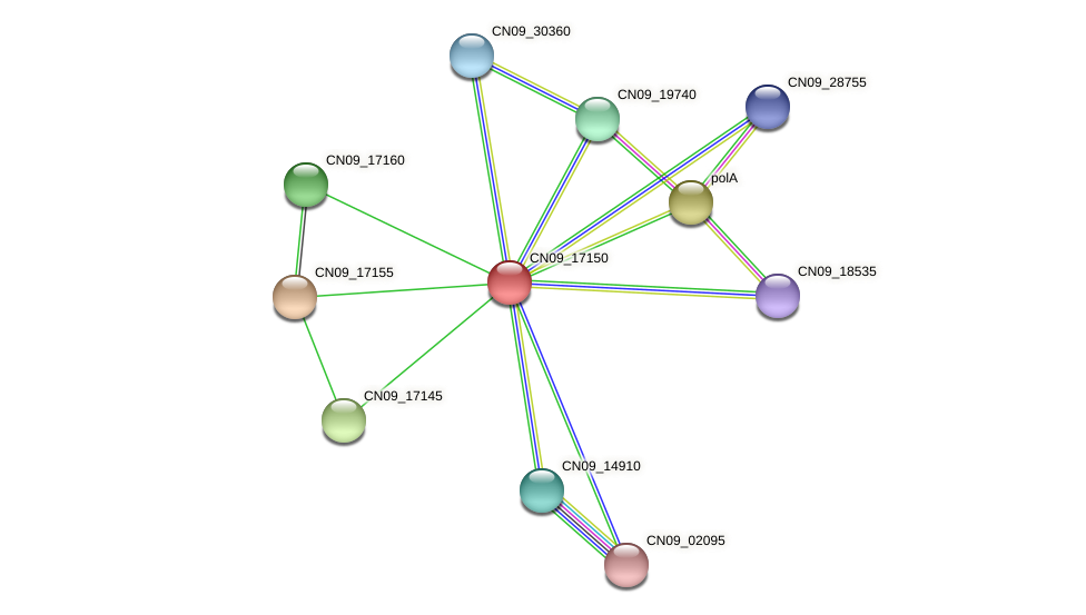 CN09_17150 protein (Agrobacterium rhizogenes) - STRING interaction network