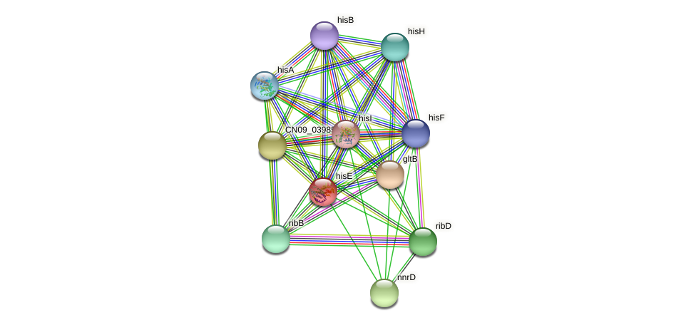 hisE protein (Agrobacterium rhizogenes) - STRING interaction network